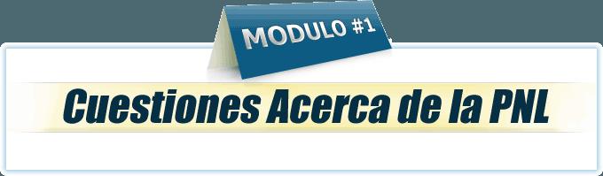 Módulo 1 Practitioner en PNL online
