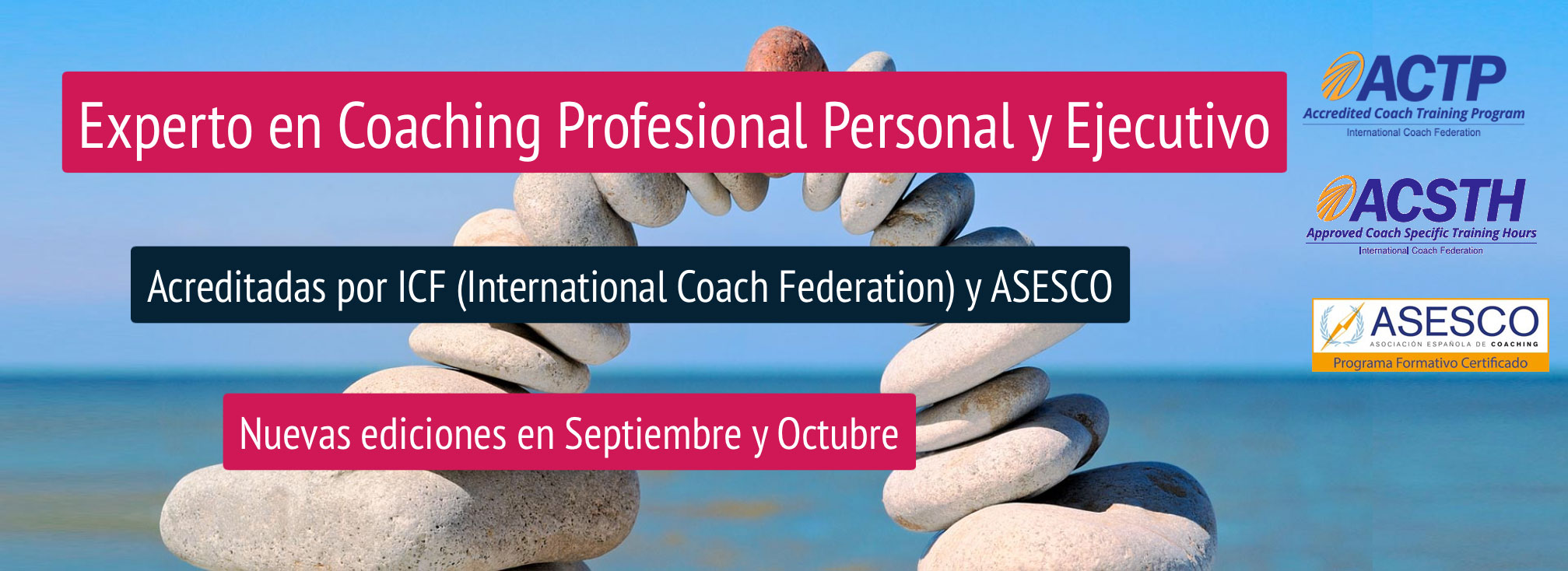 Experto en Coaching Profesional Personal y Ejecutivo
